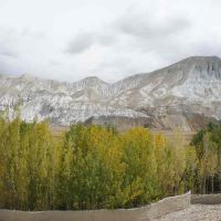 view-from-mustang